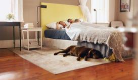 舒适地睡觉在与狗的床上的年轻夫妇在地板上 库存图片