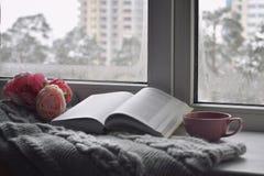 舒适家庭静物画:杯子热的咖啡、春天花和被打开的书与温暖的格子花呢披肩在窗台反对雪 库存照片