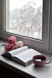 舒适家庭静物画:杯子热的咖啡、春天花和被打开的书与温暖的格子花呢披肩在窗台反对雪 图库摄影