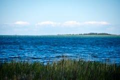 舒适的海滩有岩石和绿色vegetat的波罗的海 免版税库存照片