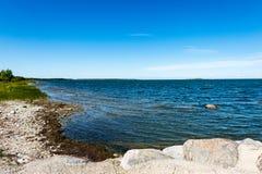 舒适的海滩有岩石和绿色vegetat的波罗的海 免版税库存图片