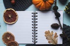 舒适秋天背景、笔记本、装饰南瓜、干桔子、蜡烛、坚果、桂香和秋叶 库存图片