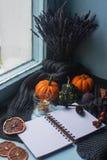 舒适秋天背景、笔记本、装饰南瓜、干桔子、蜡烛、坚果、桂香和秋叶 库存照片