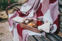 舒适秋天野餐用茶和曲奇饼 免版税库存照片