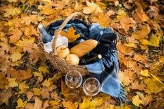 舒适秋天野餐 图库摄影
