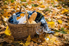 舒适秋天野餐 库存照片