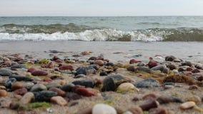 舔在岸的波浪 与小卵石的沙滩 低点射击 在前景的五颜六色的小卵石在迷离 股票录像