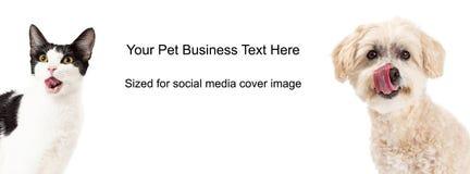 舔嘴唇封面照片的狗和猫 免版税库存照片