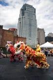 舞狮在唐人街,波士顿在农历新年庆祝时 免版税图库摄影