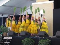 舞蹈夏威夷人马戏团 库存照片