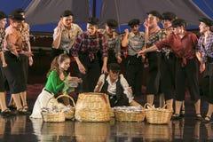 舞蹈学校的未认出的舞蹈家在表现芭蕾期间的 免版税图库摄影