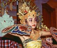 舞蹈家执行游人的印度尼西亚舞蹈potpurri 库存图片