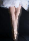 舞蹈家腿 免版税库存照片