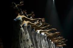 舞蹈家行做美好的姿势 库存照片