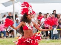 舞蹈演员夏威夷人 库存图片