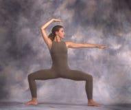 舞蹈演员表单 免版税库存图片