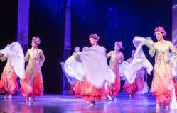 舞蹈部门俏丽的Huadan 9中国古典舞蹈毕业展示  免版税库存图片