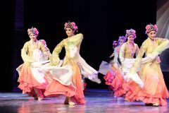 舞蹈部门俏丽的Huadan 8中国古典舞蹈毕业展示  库存照片