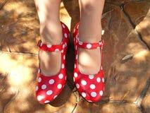 舞蹈鞋子 库存图片