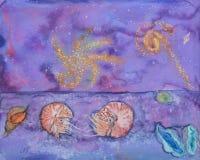 舡鱼软体动物和繁星之夜 库存图片