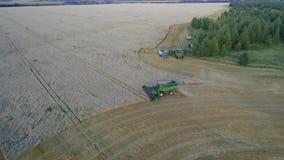 航拍:收割机完成收获在麦田的麦子在日落 难以置信的空间 股票视频