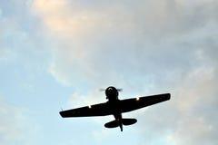 航空军人 库存图片