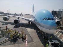 航空器在JFK终端的服务乘员组 免版税库存照片