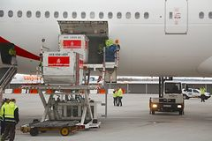航空器地面工作 免版税图库摄影