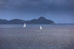 航行乘快艇与白色风帆在公海 图库摄影