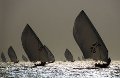 航行剪影的单桅三角帆船 库存照片