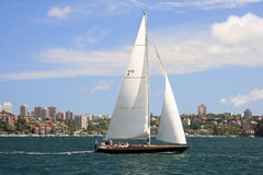 航行在悉尼港口 库存照片