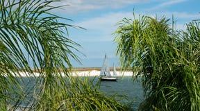 航行在海湾 免版税图库摄影