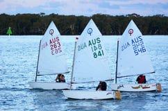 航行在英属黄金海岸昆士兰澳大利亚 免版税库存图片