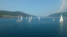 航行的游艇赛船会的鸟瞰图在亚得里亚海 股票视频
