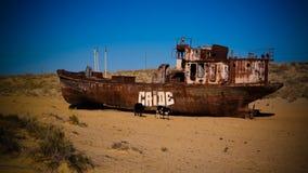 船公墓全景在Moynaq附近的在与母牛的日出, 免版税库存图片