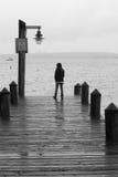船坞港口皮吉特湾西雅图华盛顿州渔船 免版税库存照片