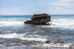 船击毁在海 库存图片