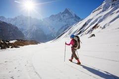 艰苦跋涉的远足者在喜马拉雅山,安纳布尔纳峰谷,尼泊尔 免版税库存图片