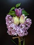 紫色丁香和郁金香花束在黑暗的背景 免版税库存图片