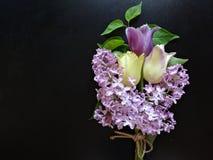 紫色丁香和郁金香花束在黑暗的背景 库存图片