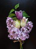 紫色丁香和郁金香花束在黑暗的背景 库存照片