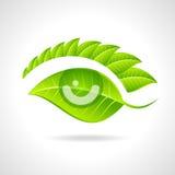 绿色与叶子和眼睛的eco友好的象 免版税库存照片