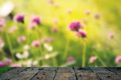绿色与浓缩的地面的灌木墙壁自然纹理背景 免版税库存照片