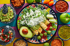 绿色与鳄梨调味酱捣碎的鳄梨酱的辣酱玉米饼馅墨西哥食物 免版税库存照片