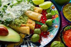 绿色与鳄梨调味酱捣碎的鳄梨酱的辣酱玉米饼馅墨西哥食物 免版税库存图片