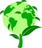 绿色世界植物 免版税库存图片