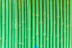 绿色中国竹子抽象背景  库存图片