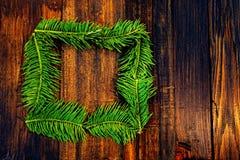 绿色云杉框架  免版税图库摄影