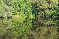 绿色五十片树荫  免版税库存照片