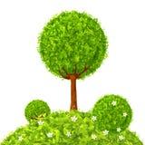 绿色传染媒介三角摘要被隔绝的树 免版税库存图片